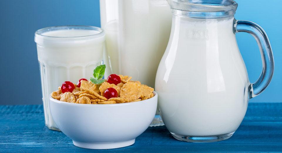 Ein Milchprodukt, z. B. Joghurt Natur, Milch etc.