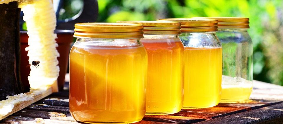 Kinder und Eltern äußern sich zur Heilkraft von Honig
